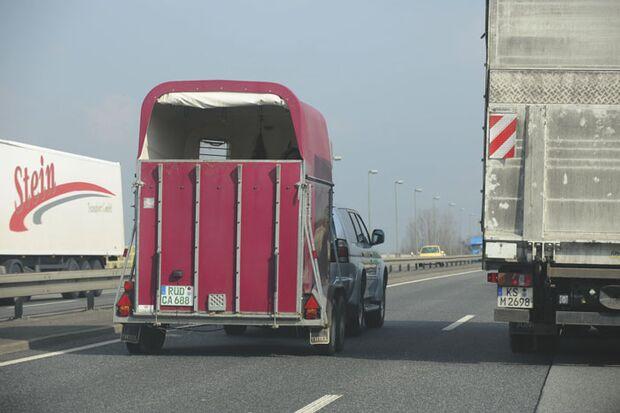 1 CAV Pferdetransport