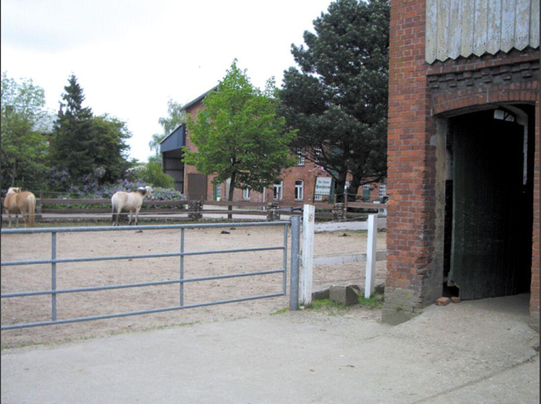 CA Reitschultest 0706 Ponyfarm6 (jpg)