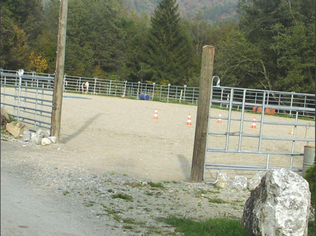CA Reitschultest 1206 Saddle4 (jpg)