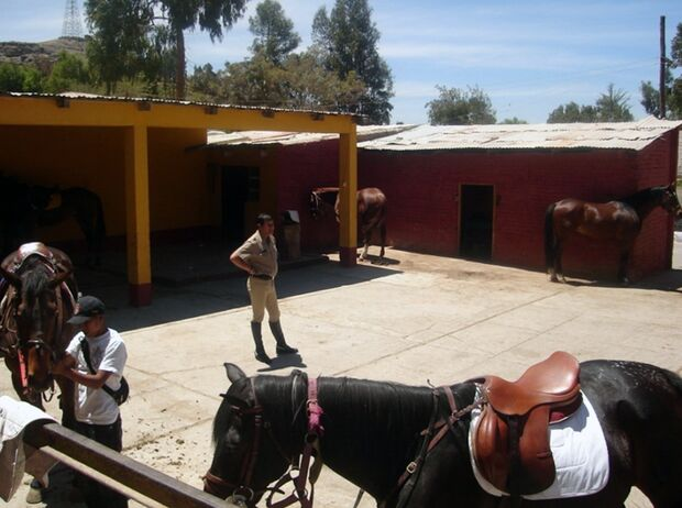 CAV 0111 Peru_15b (jpg)