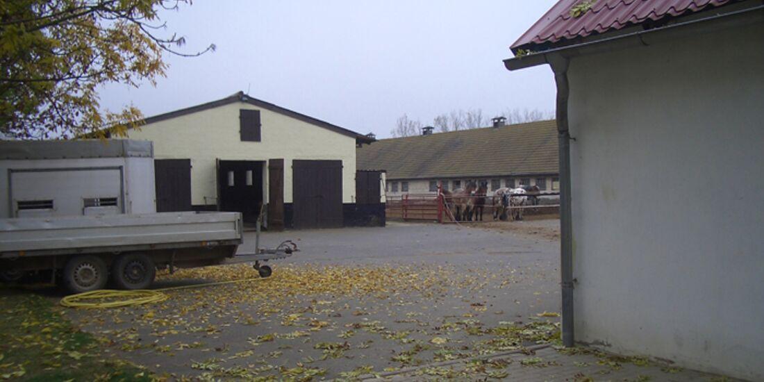 CAV-0113-Reitschultest-Harz-Gothe-1 (jpg)