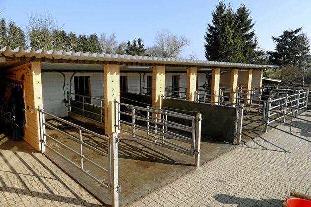CAV-0612-Reitschultest-CFS-Ranch-Stall (jpg)