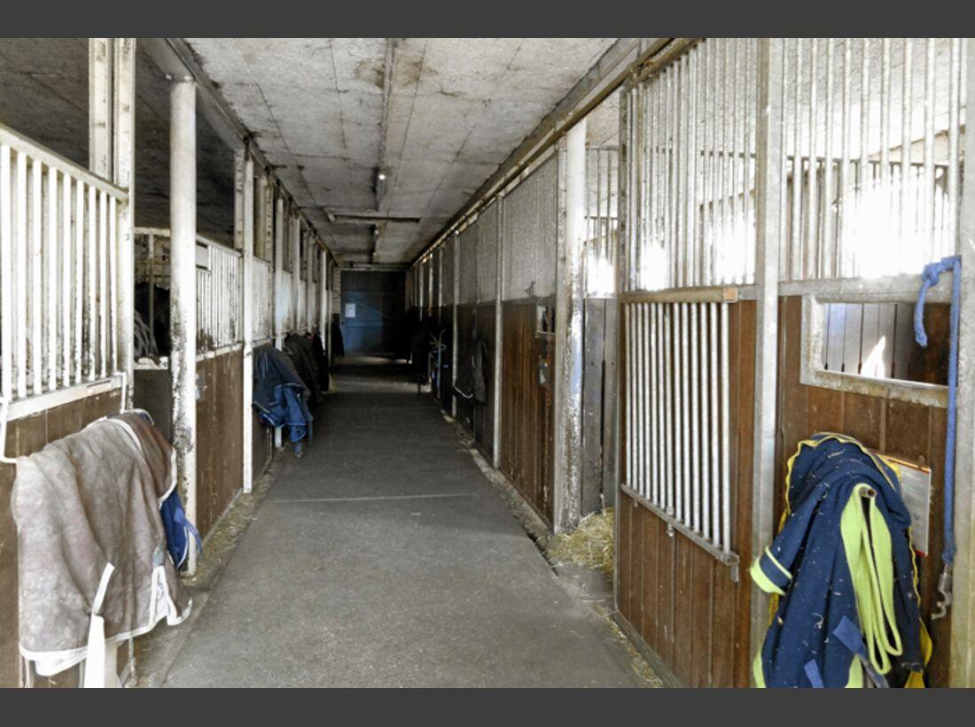CAV-0612-Reitschultest-Ramstein-Stall (jpg)