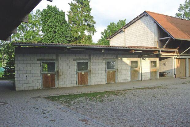CAV_0810_Reitschultest_Entenhof-3927 (jpg)