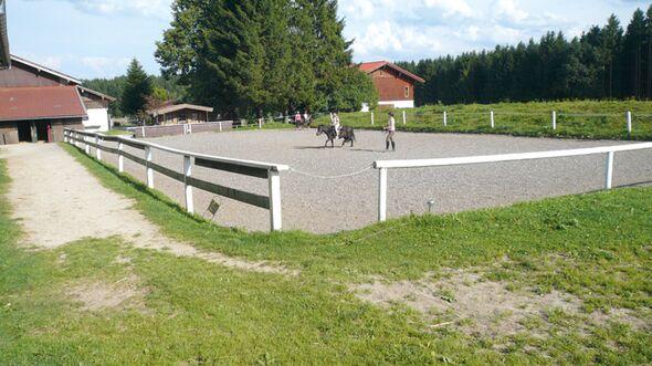 CAV 1008 Reitschultest weberhof 3 (jpg)