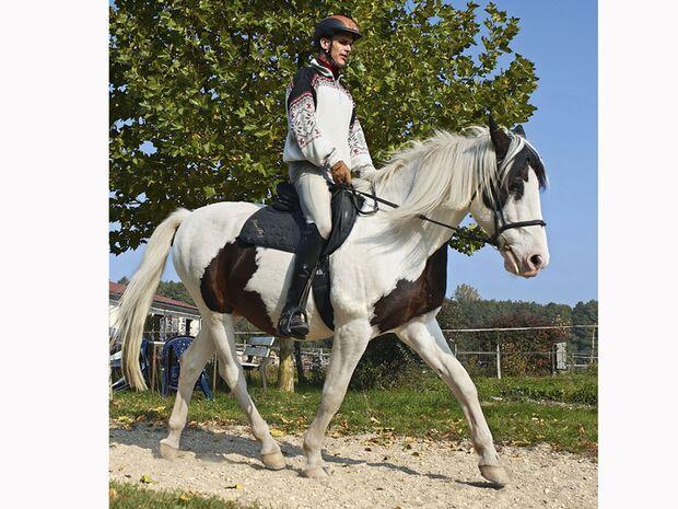 CAV 12_2010-Pferd-locker-reiten_Schoenewald_14 (jpg)