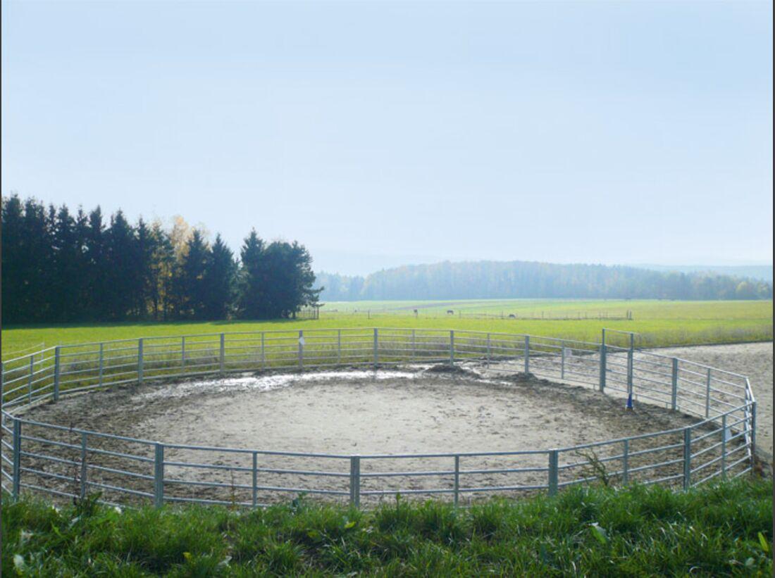 CAV 1208 Reitschultest pferdepunkt 2 (jpg)