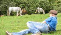 CAV Allein in der Pferde-Herde Aufmacher 02