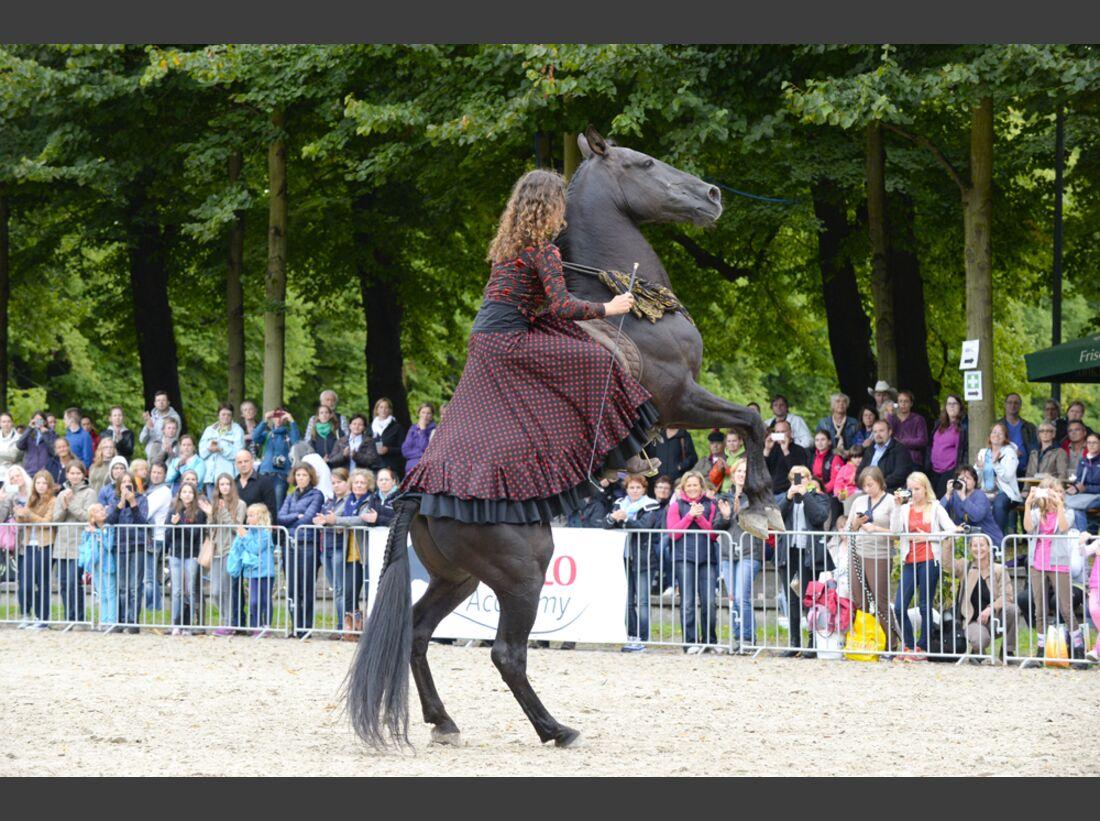 CAV-Cavallo-Academy-2014-13 (jpg)