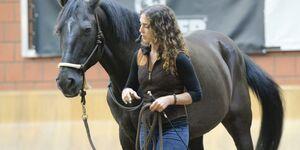 CAV Cavallo Academy 2014 Kenzie Dysli