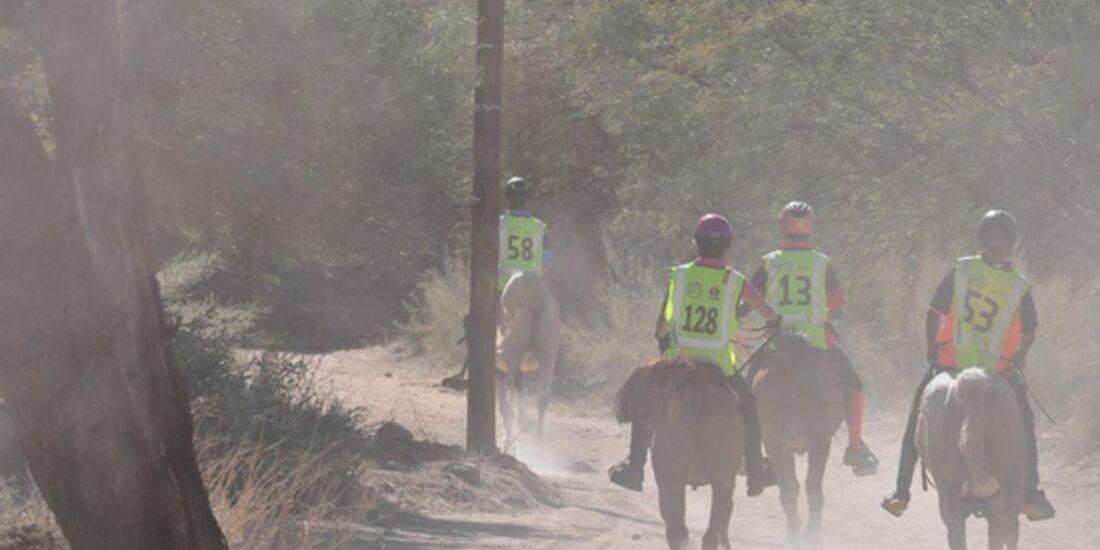 CAV-Distanzreiten-Namibia-10