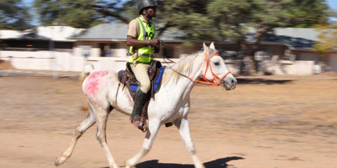 CAV-Distanzreiten-Namibia-16