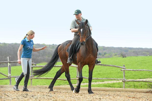 CAV Dressur Horsemanship 13