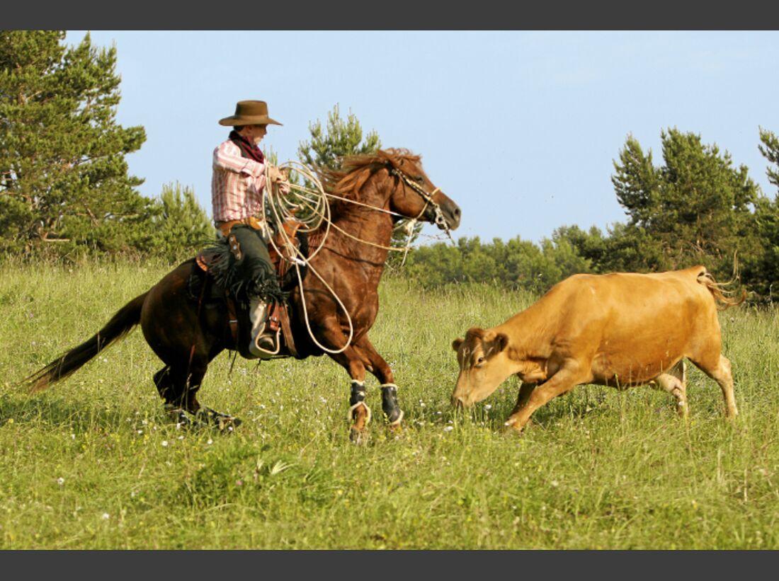 CAV Ernst-Peter Frey Sugarman Horsemanship 03