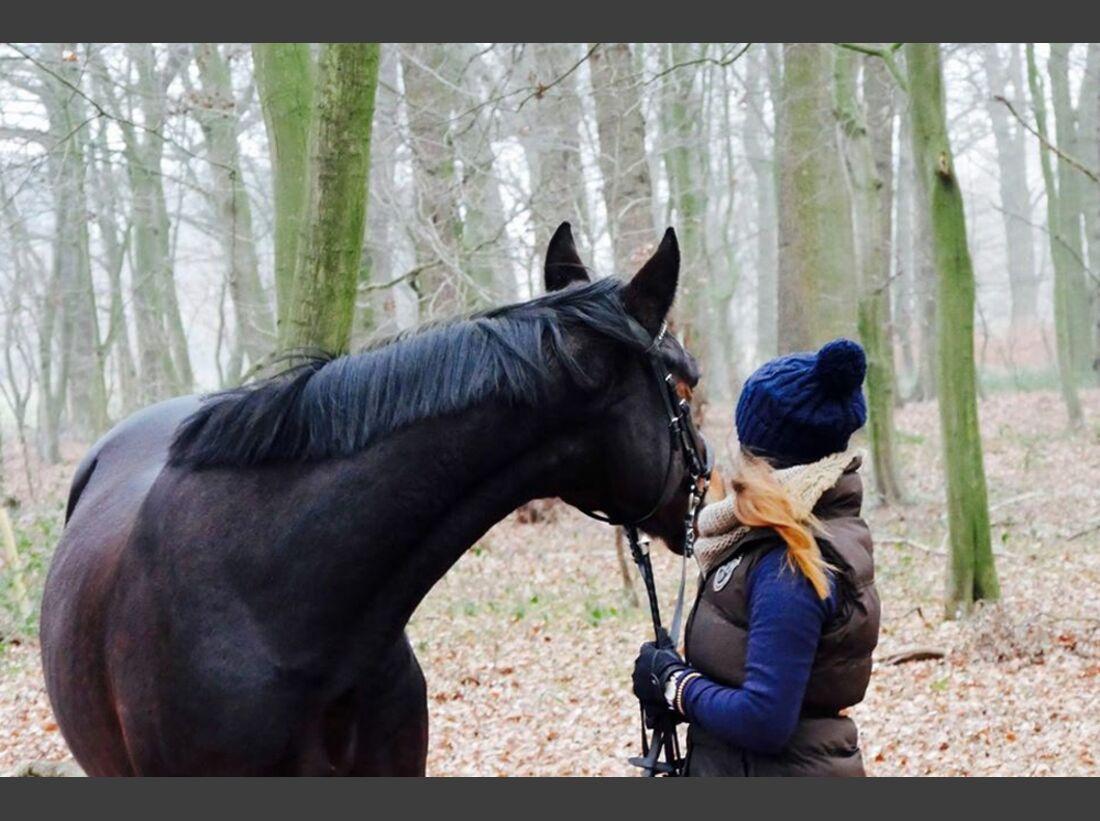 CAV Fan-Pferde Herz Dame Johanna Korte