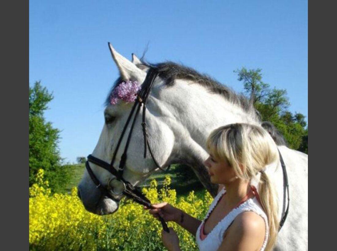 CAV-Fan-Pferde-Leseraktion-2013-Judith (jpg)
