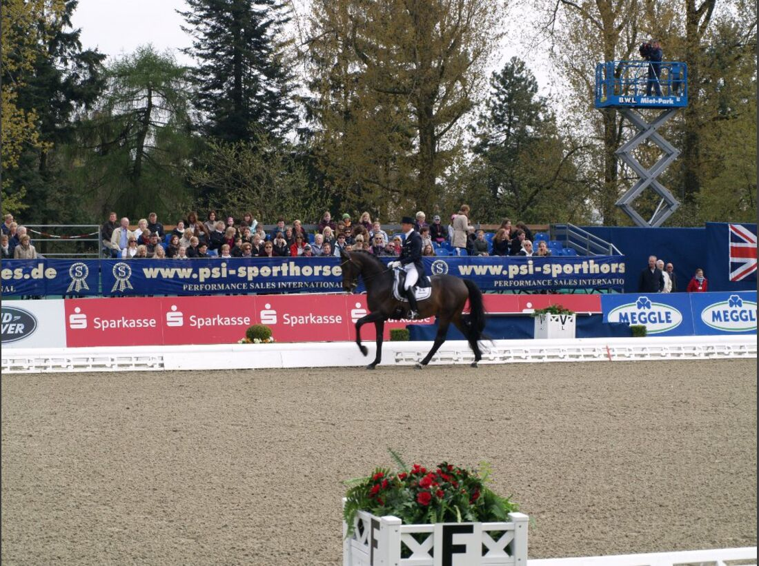 CAV Horses Dreams Patrick Kittel