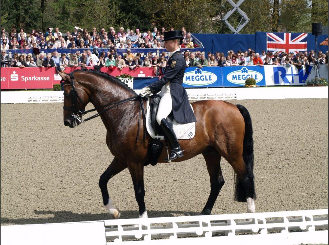 CAV Horses Dreams Victoria Max-Theurer Eichendorff