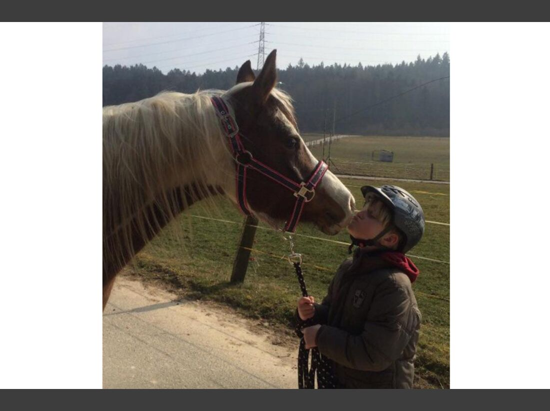 CAV Kuss Küsschen Leserfotos Julie Pfeifer
