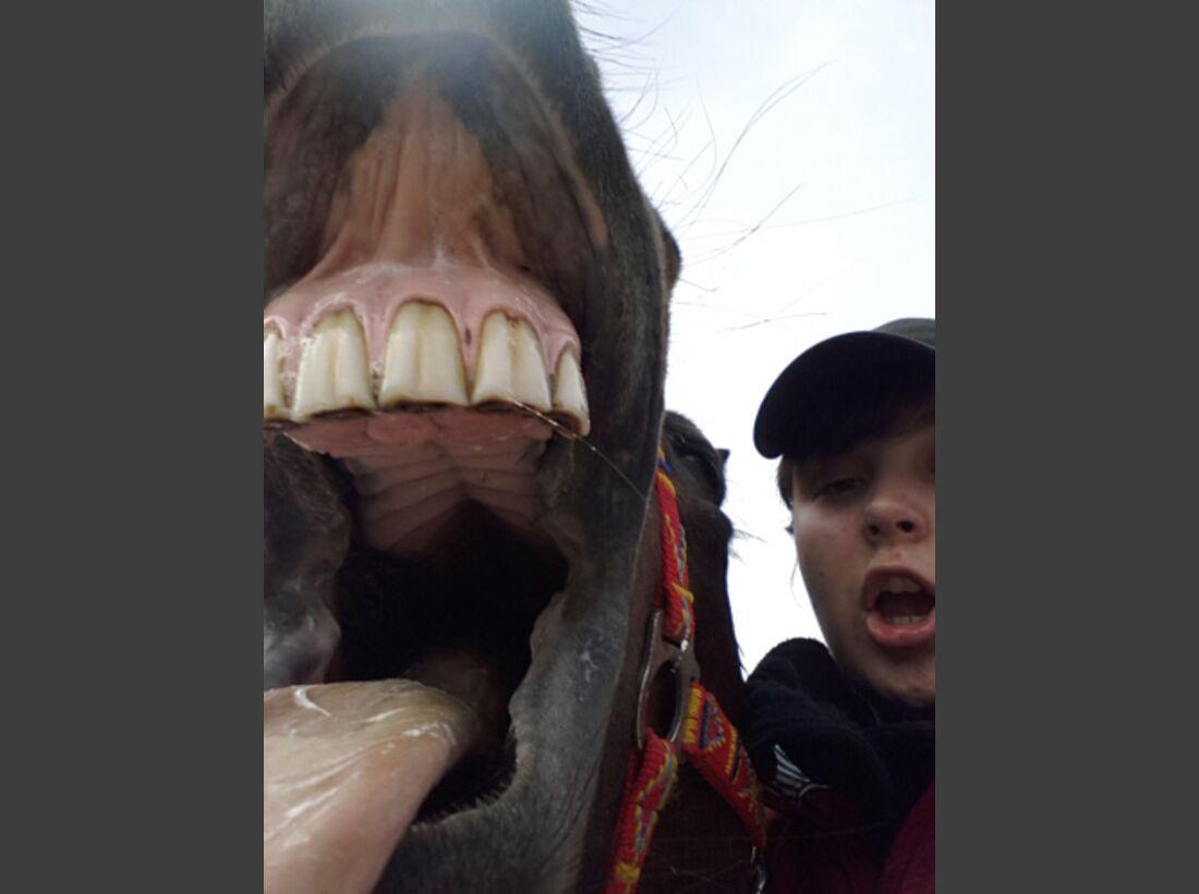 CAV Leserfotos Selfies Pferde Katja