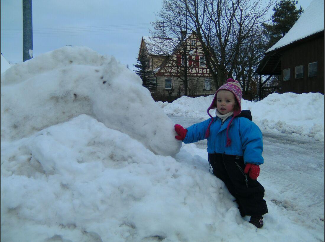 CAV MS Pferde im Winter_007 (JPG)