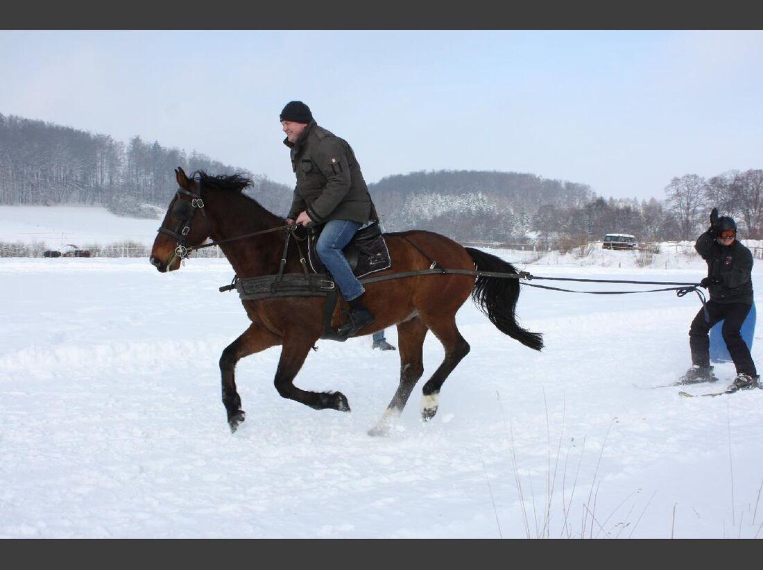 CAV MS Pferde im Winter_2 (jpg)