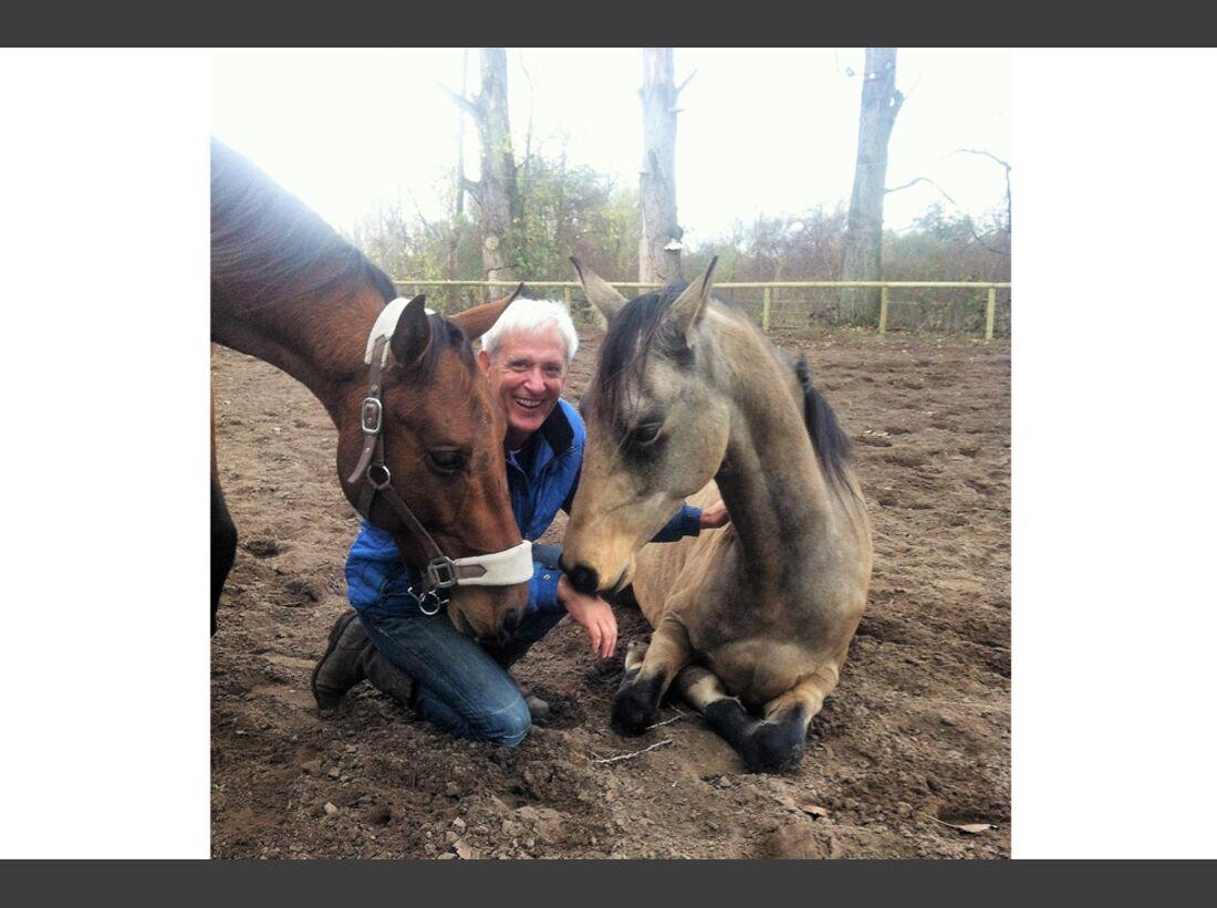 CAV Männer lieben Pferde Dominik Stein
