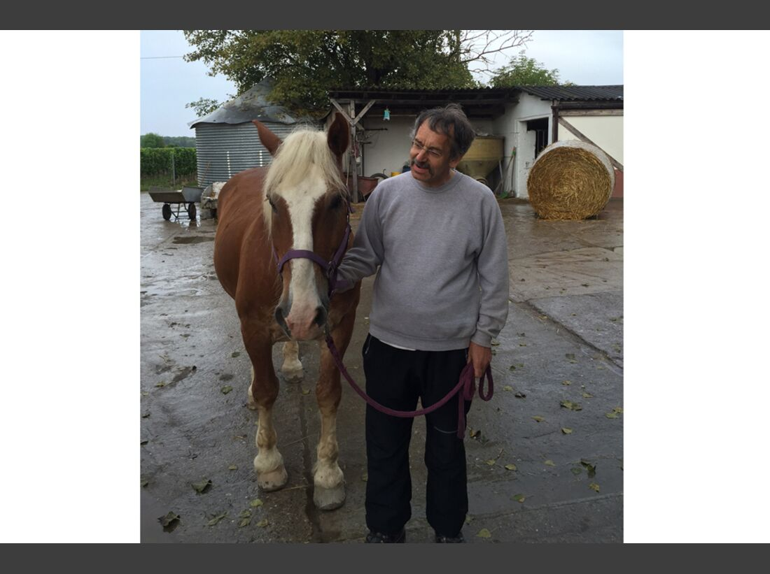 CAV Männer lieben Pferde Nicole Finley