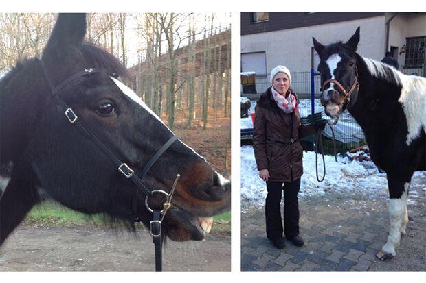 CAV Mimik Grimassen Leserfotos Alexandra Röring
