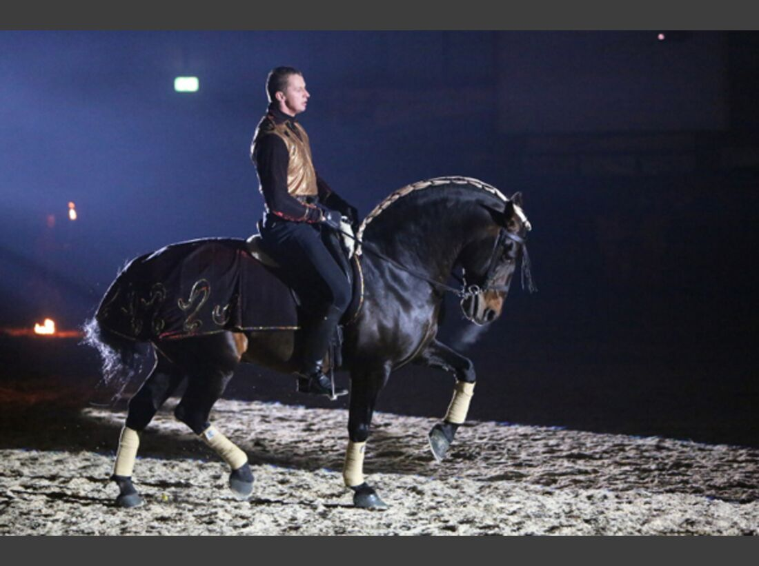 CAV Oliver Jubin Tanzende Beine Show 9