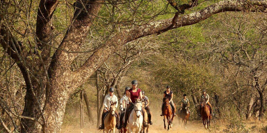 CAV Pegasus Afrika Safari 2