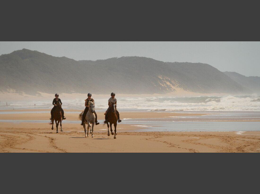 CAV Pegasus Reiterreisen Afrika 2019 Safari