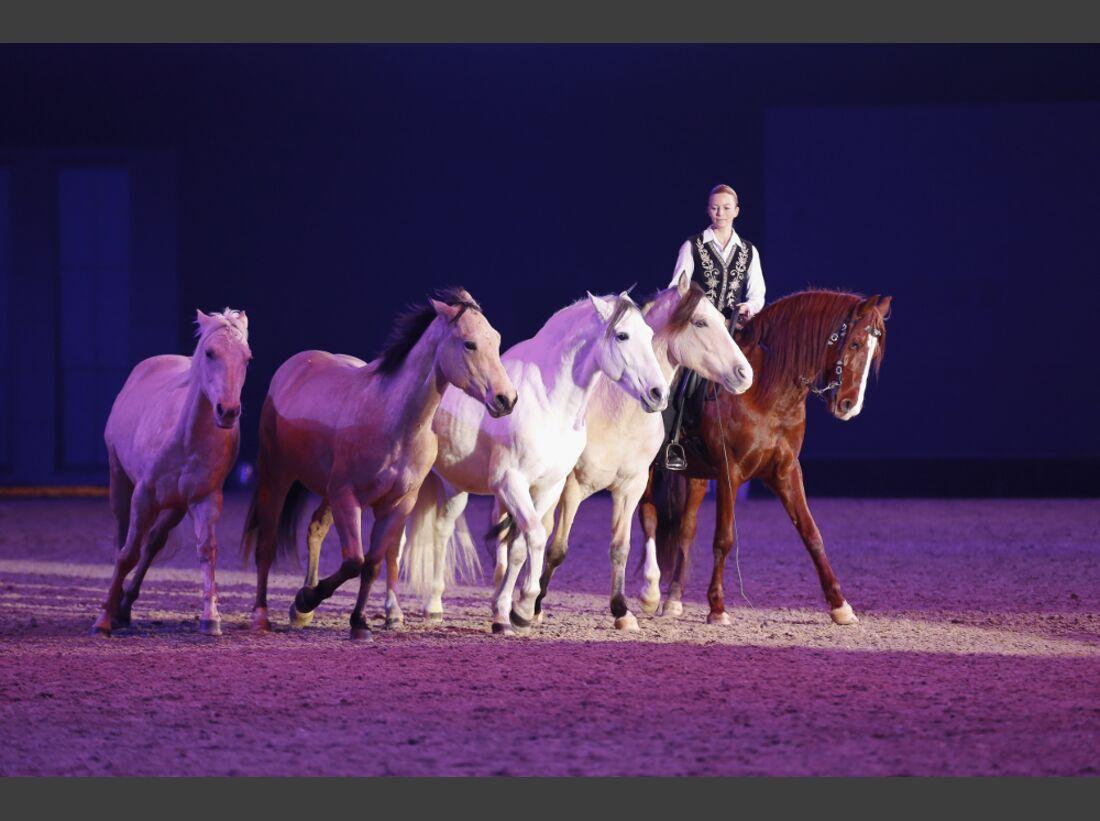CAV Pferd Jagd 2014 Messe
