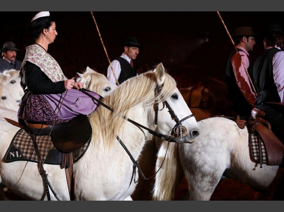 CAV Pferd und Jagd 19