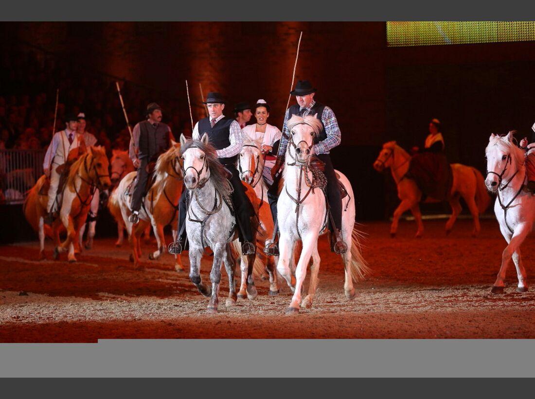 CAV Pferd und Jagd 22