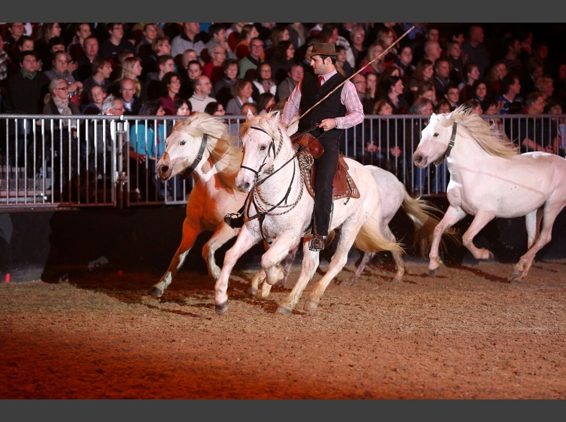 CAV Pferd und Jagd 24