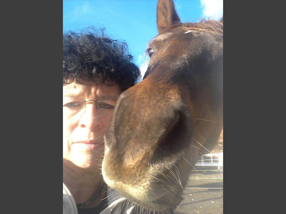 CAV-Pferde-Selfie-Leseraktion-2014-Sabine-Rodich (jpg)