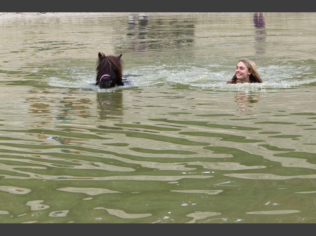 CAV-Pferde-beim-schwimmen-Alisha-Unger (JPG)