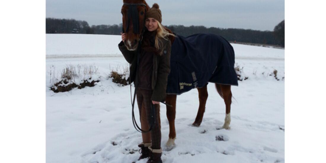 CAV Pferde im Schnee - Catan und Scarlett