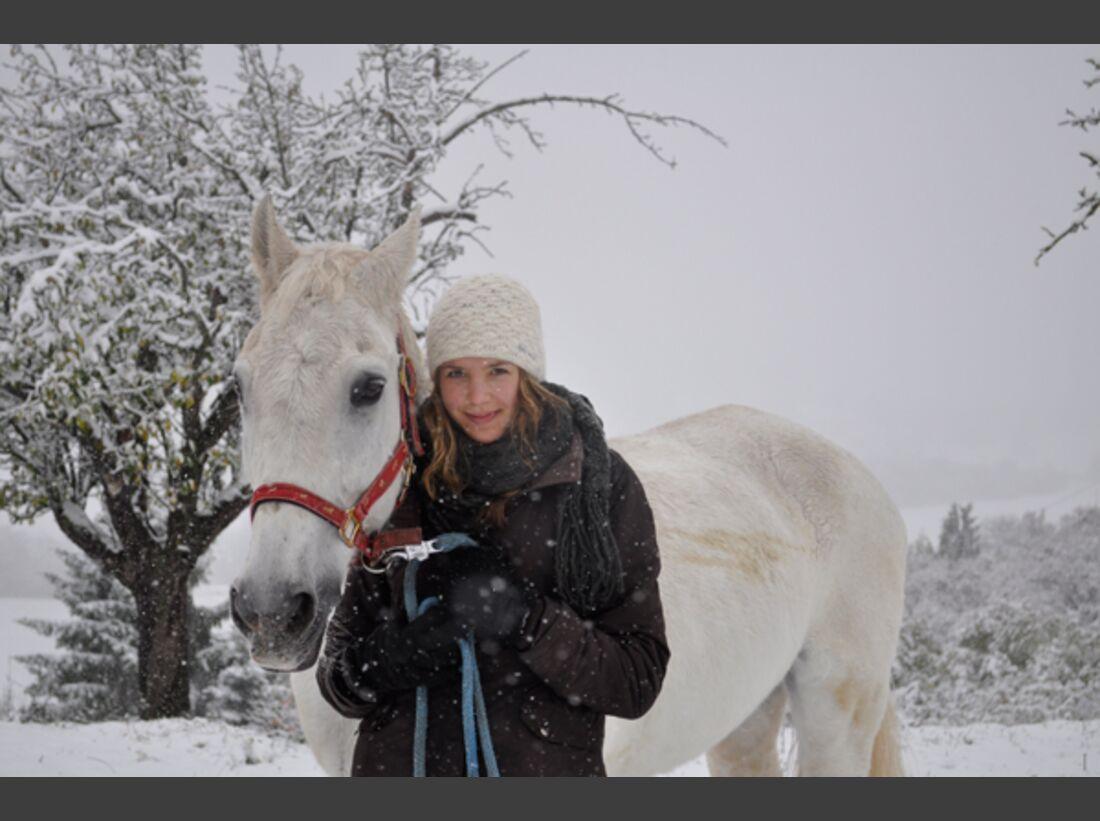 CAV Pferde im Schnee Winter 2012-10-30 2