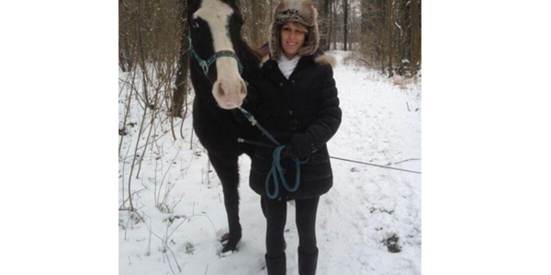 CAV Pferde im Schnee Winter 2012-10-30 Sidney 7