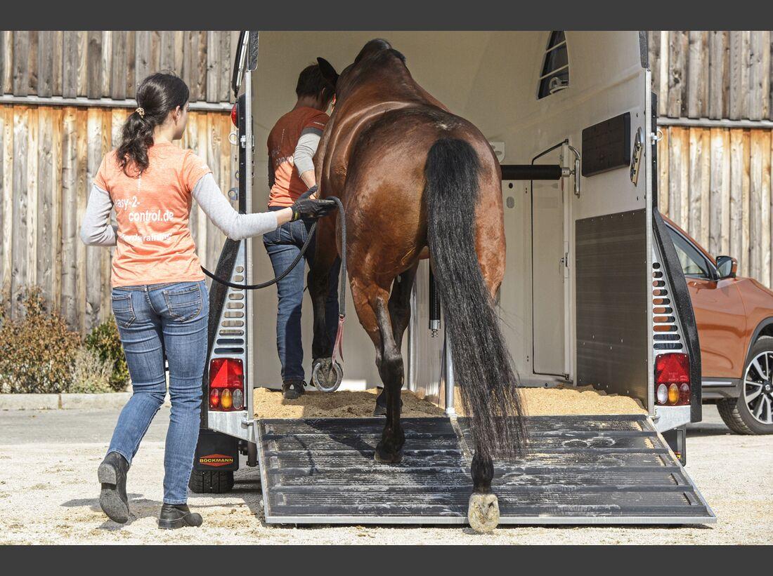 CAV Pferdehänger Pferd verladen 10