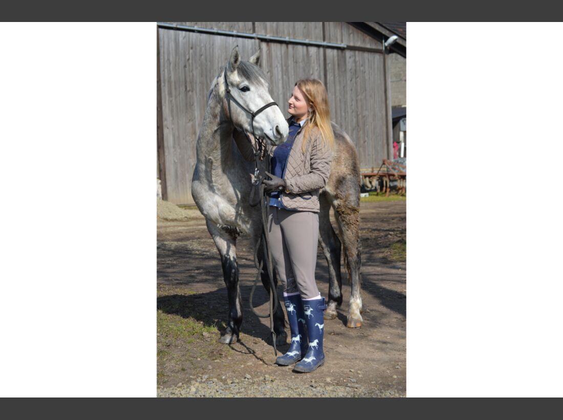CAV Pferderassen Milena
