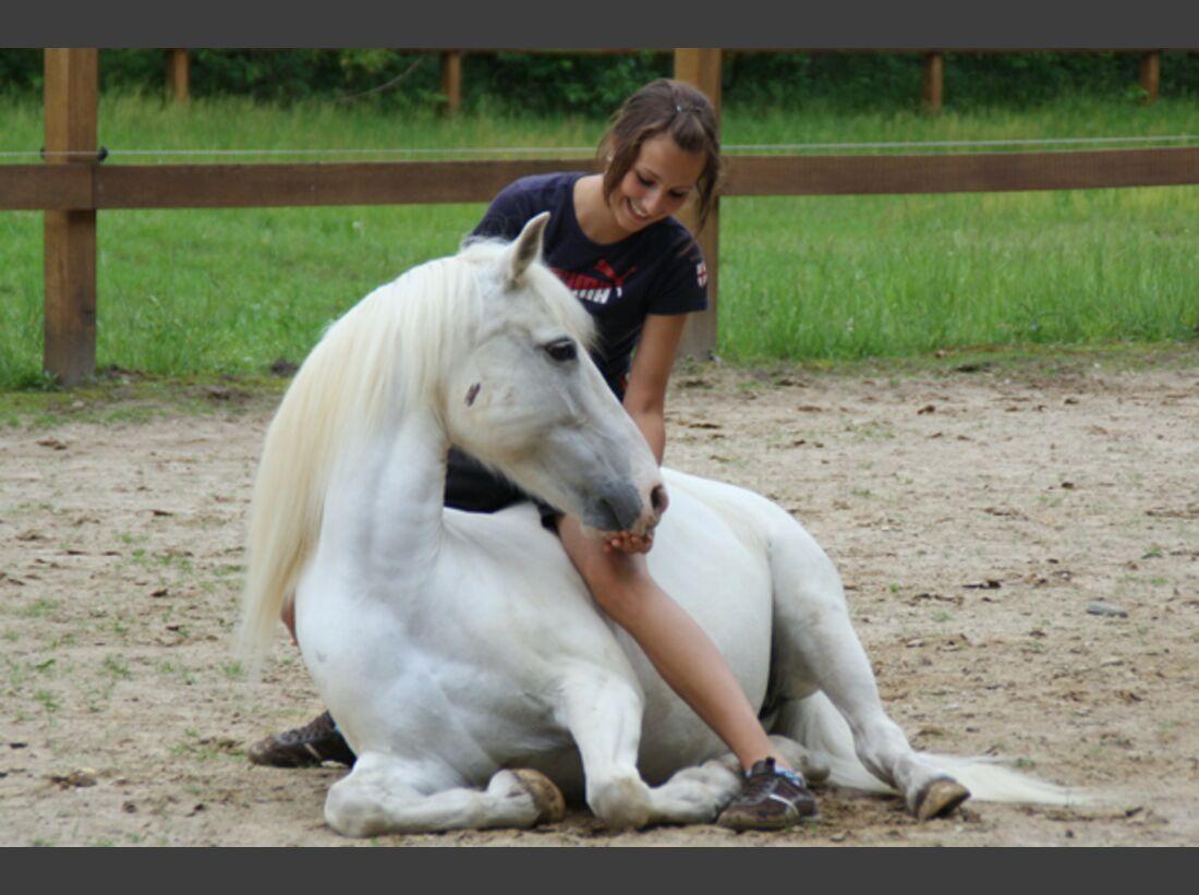 CAV Pony Leserfotos 34