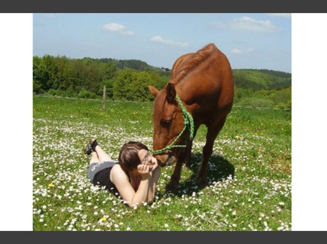 CAV Pony Leserfotos 9