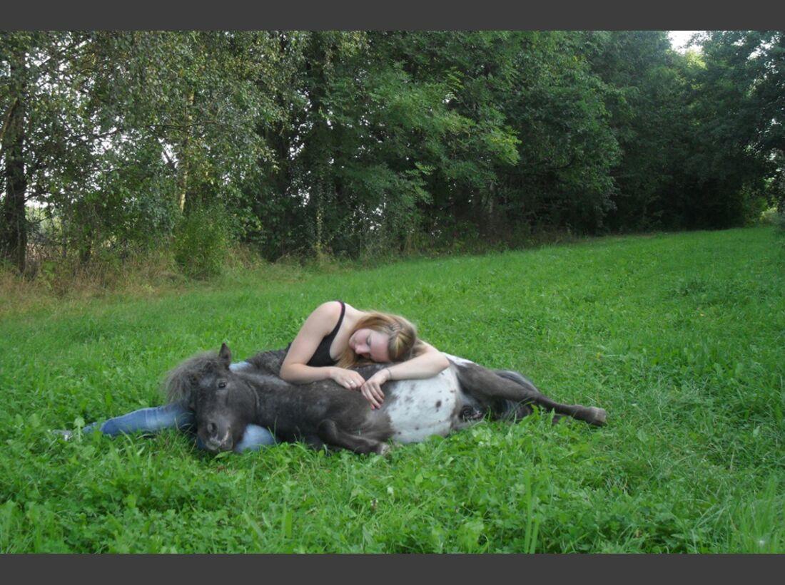 CAV Pony Leserfotos Hannah-Tabea Dubiel