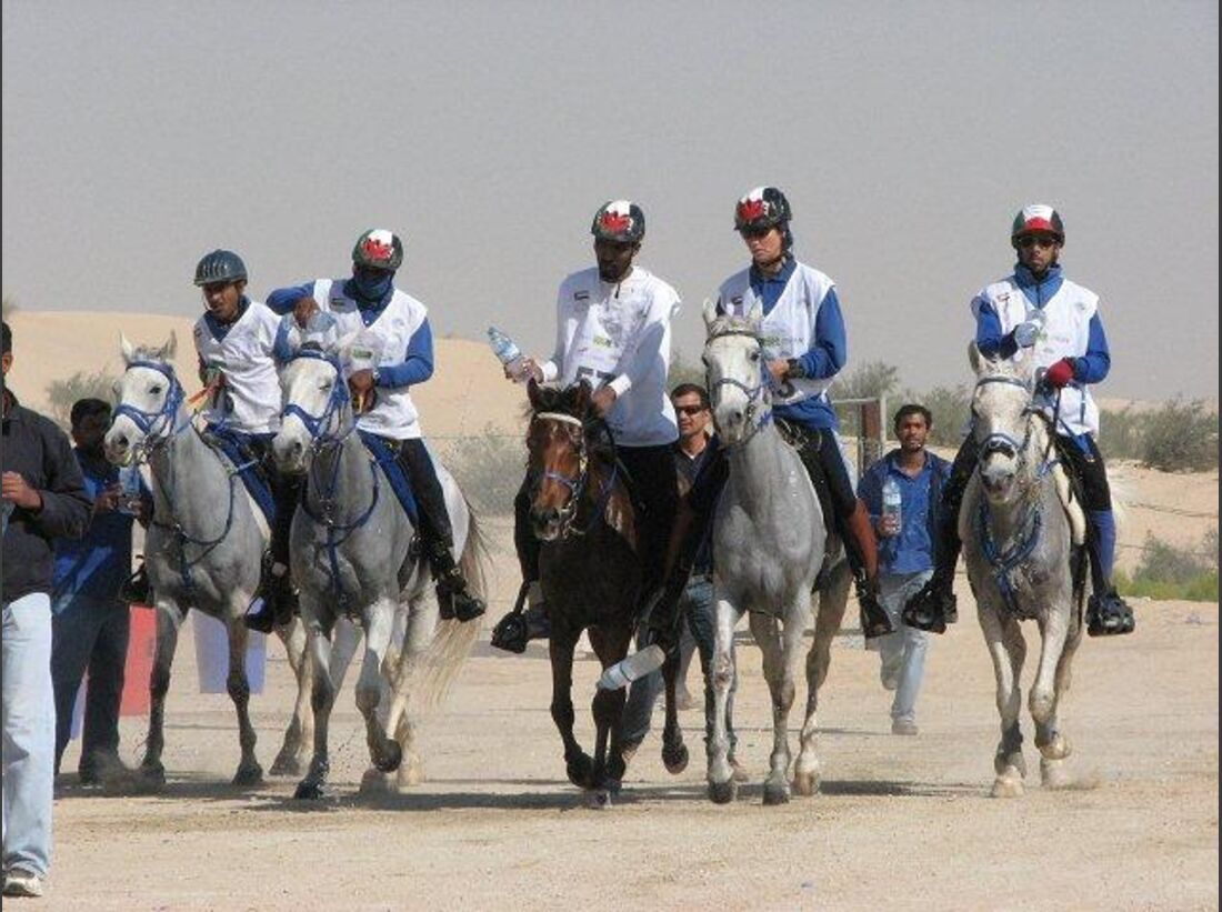CAV Presidents Cup Abu Dhabi_12 (jpg)