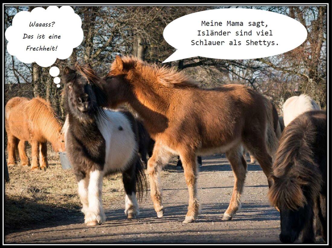 CAV Schräg Witzig Skurril Christina Bischoff 4