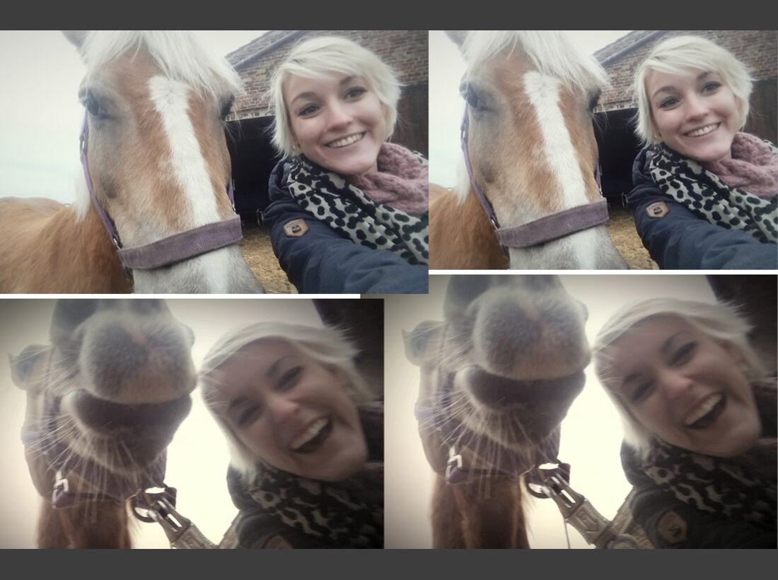CAV Selfies Pferde Ronja-Marie Baumgarten