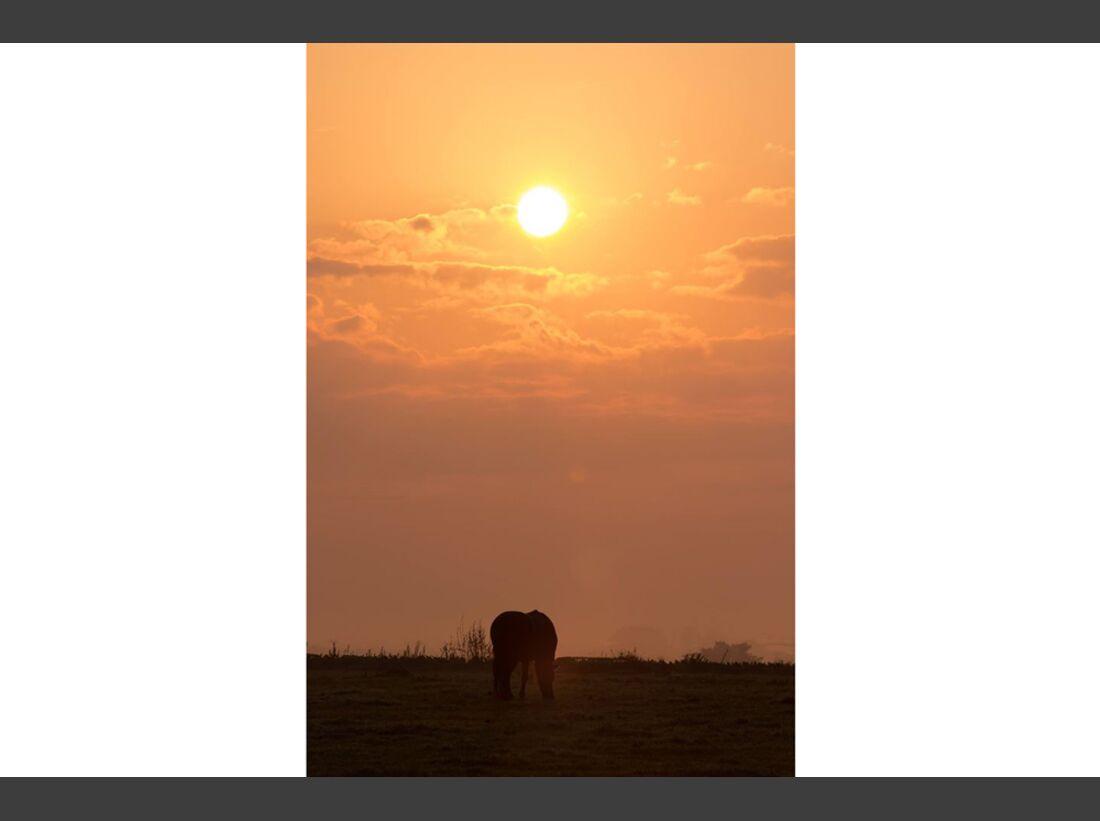 CAV Sonnenaufgang Constanze Jendrike